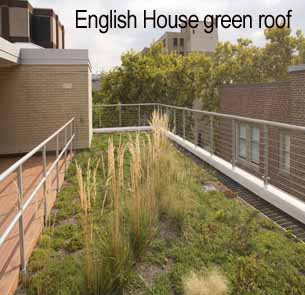 English House Green Roof