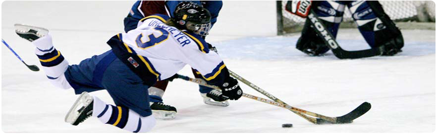 Banner image - photo of ice hockey players