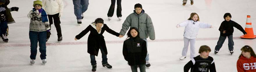 Banner image - photo of skaters at arena